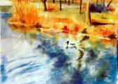 Balázsovits Zsuzsanna: Vizes élőhelyek