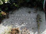 Radnóti Miklós síremléke (fotó: Legeza Dénes István)