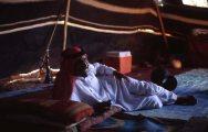 Beduin (fotó: Legeza Dénes István)