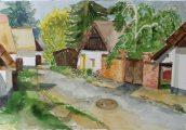 Balázsovits Zsuzsanna: Habitat