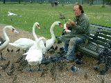 Szolidaritás (Hyde Park - London, Anglia) (fotó: Bánkeszi Katalin)
