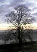 A napfelkelte fényei (fotó: Bánkeszi Katalin)