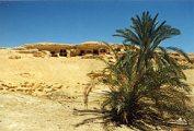 Siwa oázis (Egyiptom)(fotó: Konkoly-Thege György)