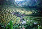 Teraszos földművelés a Fülöp-szigeteken (Batad)(fotó:                             Konkoly-Thege György)
