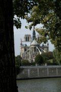 Notre Dame - Párizs, Franciaország (Fotó: Legeza Dénes István)