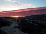 Vörös égalja(fotó: Vimola Ágnes)