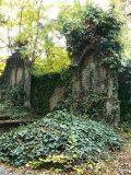 Elhagyott sírok(fotó: Perdy-Fazakas Brigitte)