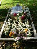 József Attila családi sírhelye a Kerepesi temetőben – 2005, emlékév(fotó: Perdy-Fazakas Brigitte)