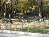 Hajléktalanok egy budapesti parkban, 2006-ban (Fotó: Vimola Ágnes)