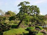 Kert – Japánban (fotó: internet)